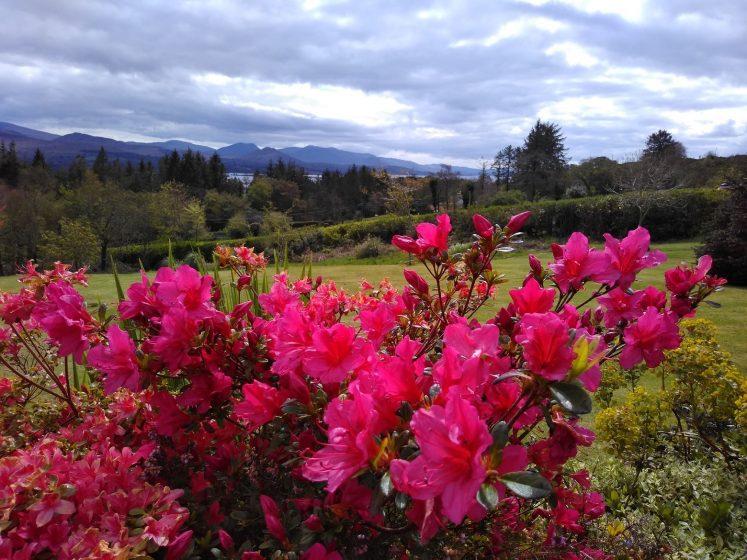 Valhalla BnB Gardens